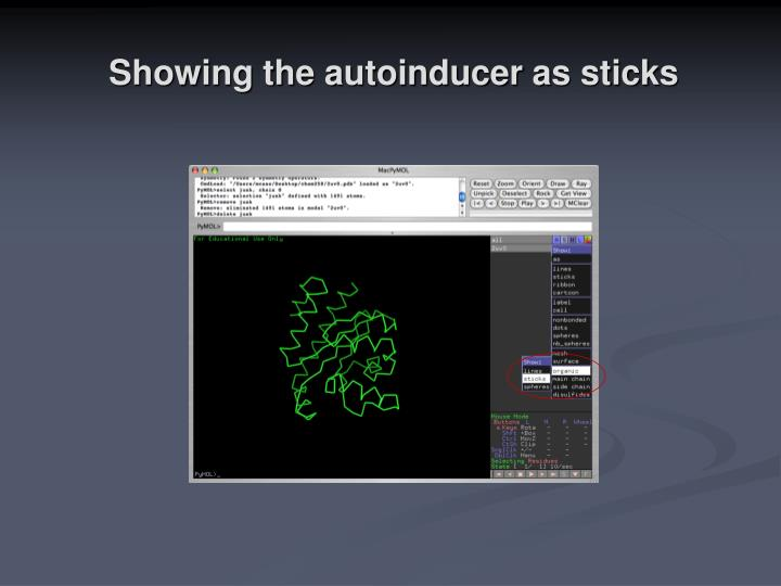 Showing the autoinducer as sticks