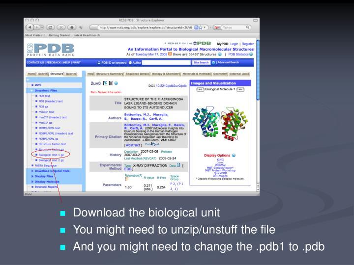 Download the biological unit