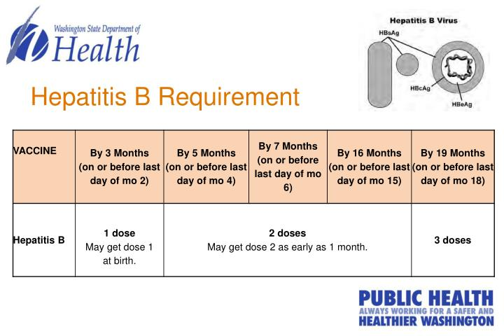 Hepatitis B Requirement