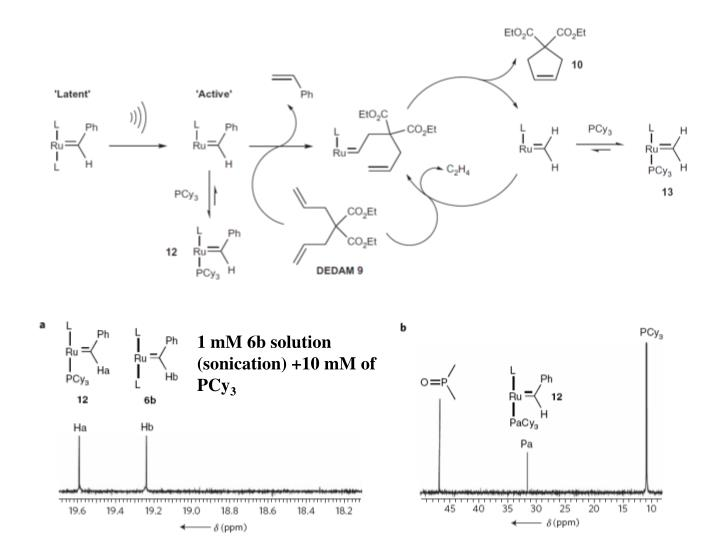1 mM 6b solution (sonication) +10 mM of PCy