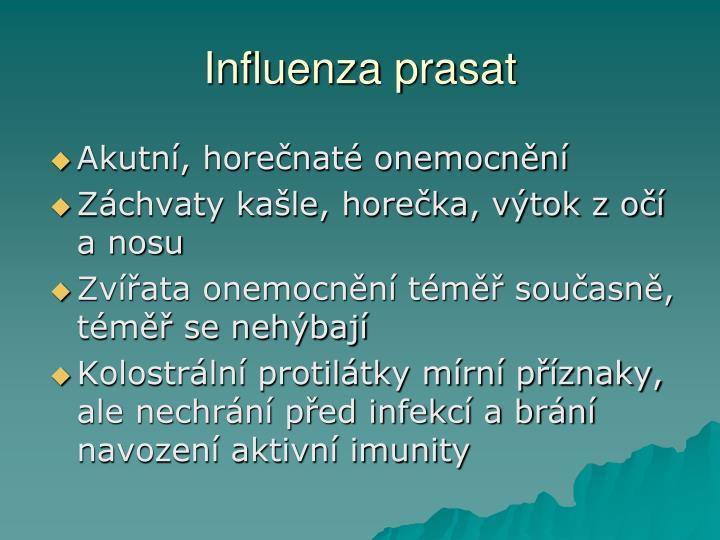 Influenza prasat