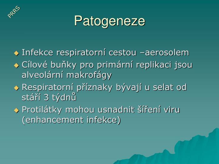Patogeneze