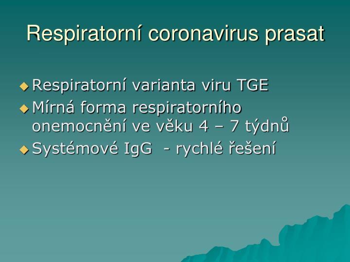 Respiratorní coronavirus prasat