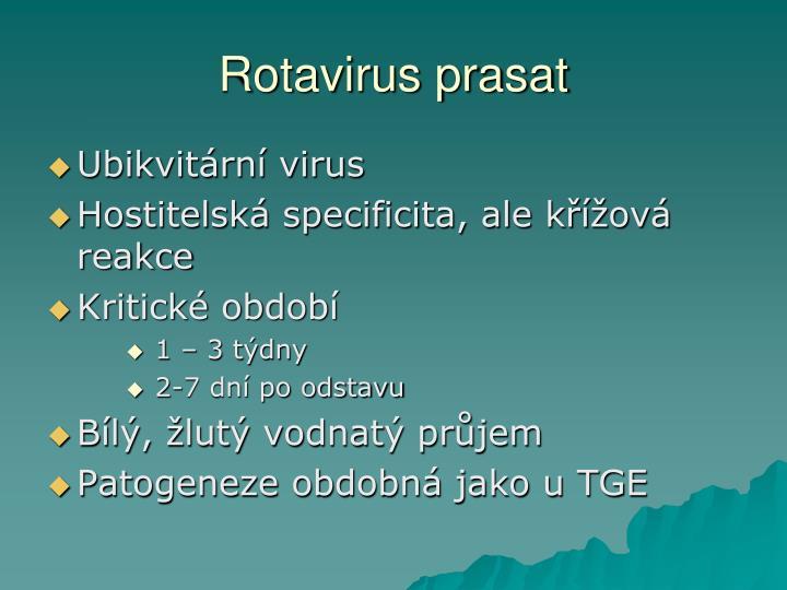 Rotavirus prasat