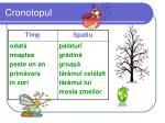cronotopul1