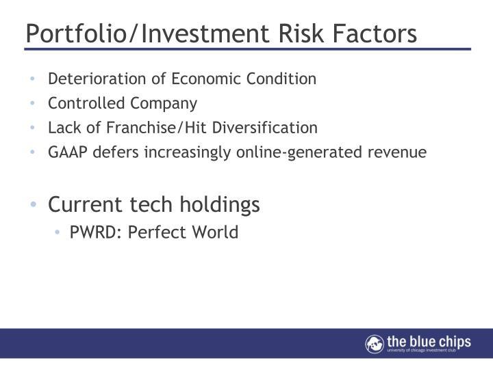 Portfolio/Investment Risk Factors