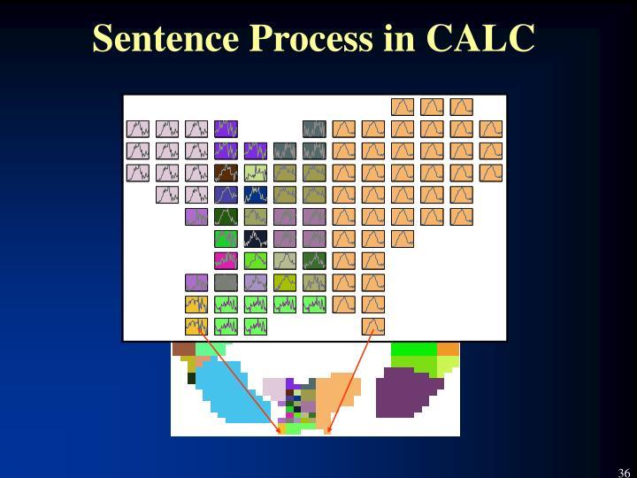 Sentence Process in CALC