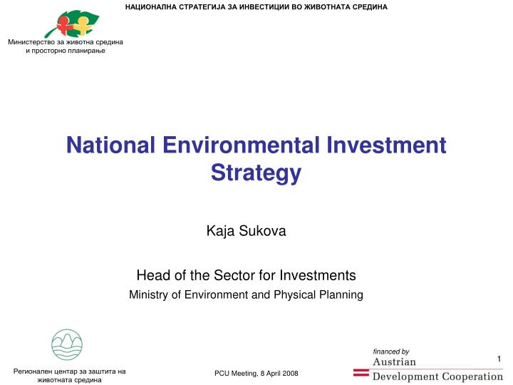 National environmental investment strategy