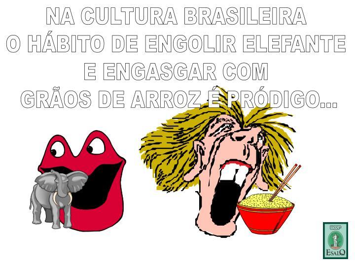 NA CULTURA BRASILEIRA