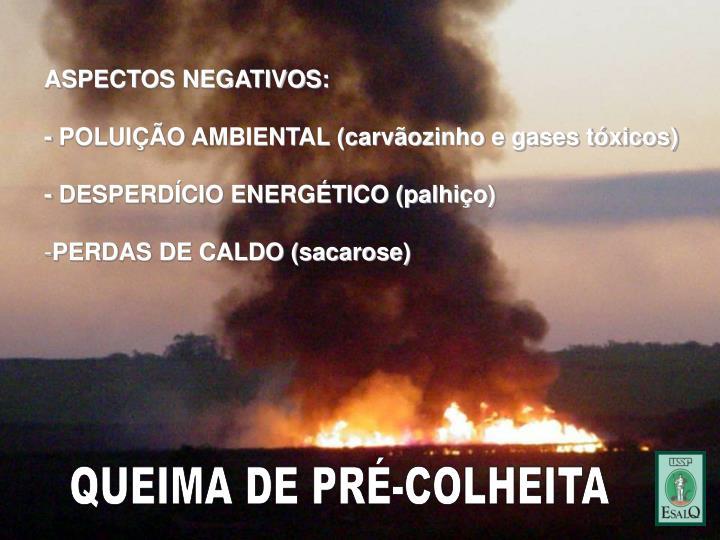 ASPECTOS NEGATIVOS: