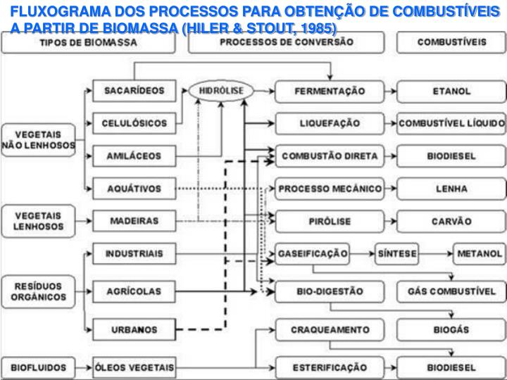 FLUXOGRAMA DOS PROCESSOS PARA OBTENÇÃO DE COMBUSTÍVEIS