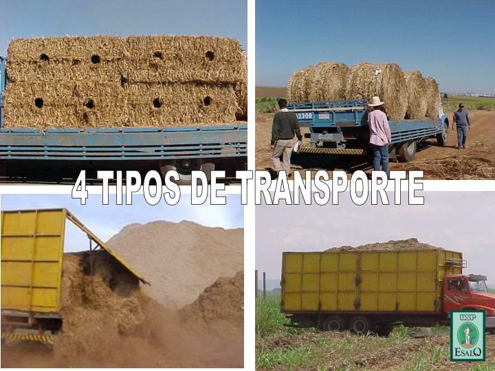 4 TIPOS DE TRANSPORTE
