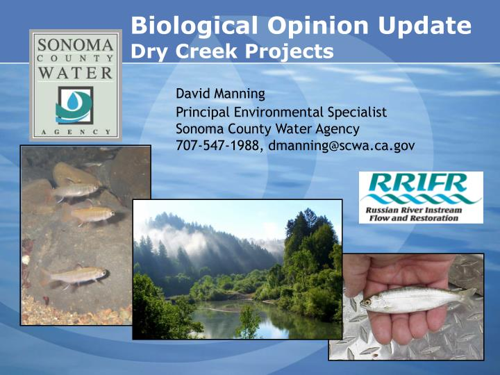 biological opinion update dry creek projects