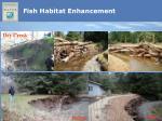fish habitat enhancement