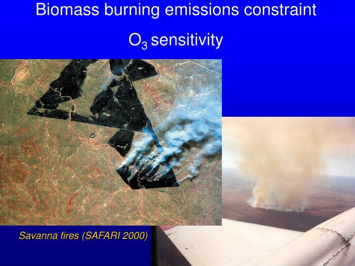 Biomass burning emissions constraint