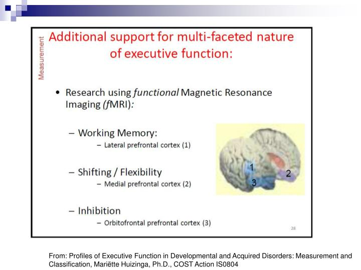 From: Profiles of Executive Function in Developmental and Acquired Disorders: Measurement and Classification, Mariëtte Huizinga, Ph.D., COST Action IS0804