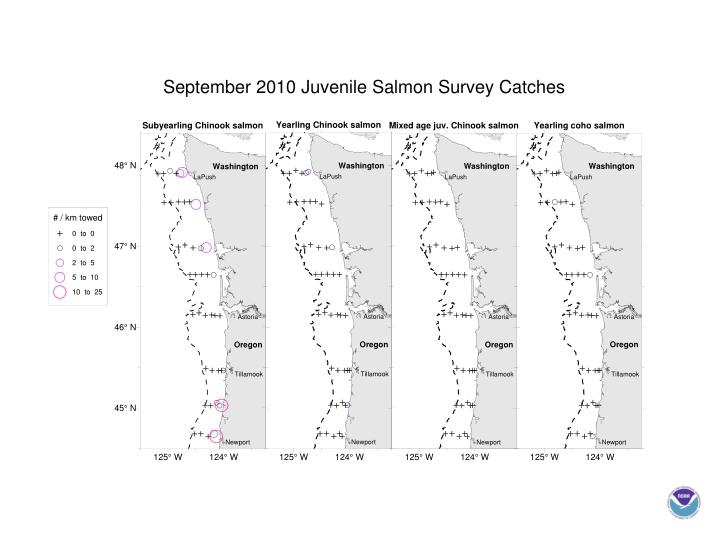 September 2010 Juvenile Salmon Survey Catches