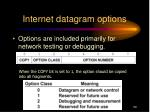internet datagram options