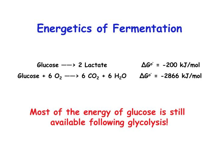 Energetics of fermentation