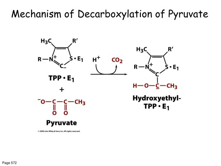 Mechanism of Decarboxylation of Pyruvate