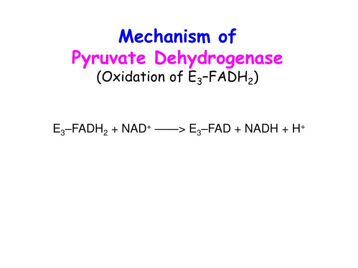 Mechanism of
