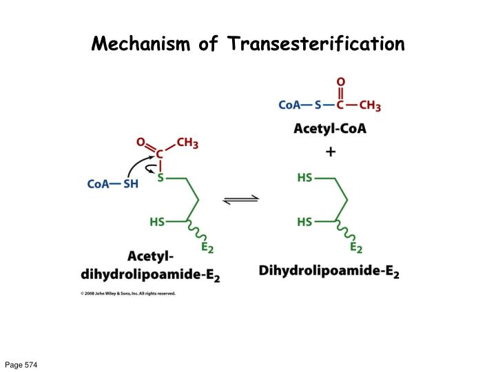 Mechanism of Transesterification