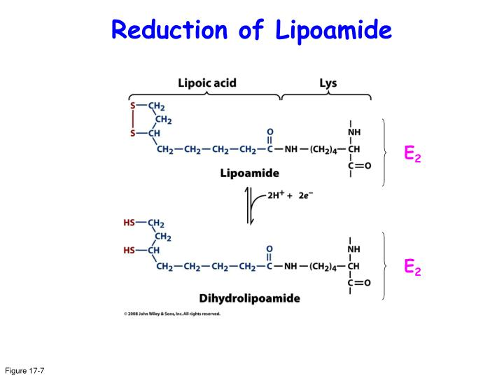 Reduction of Lipoamide