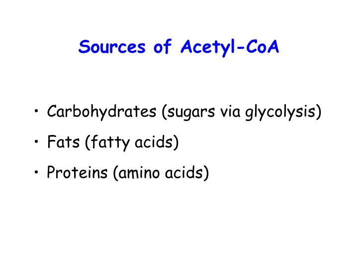 Sources of Acetyl-CoA