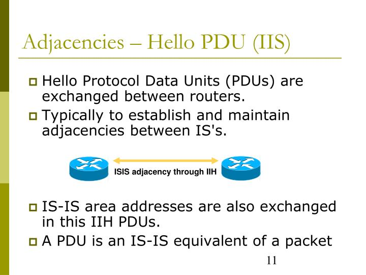 Hello Protocol Data Units (PDUs) are exchanged between routers.