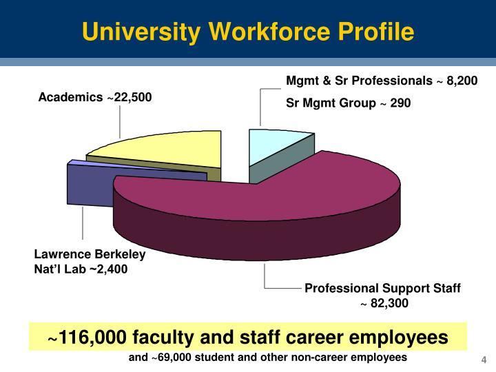 University Workforce Profile
