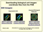 downloading biological unit images coordinate files from the pdb