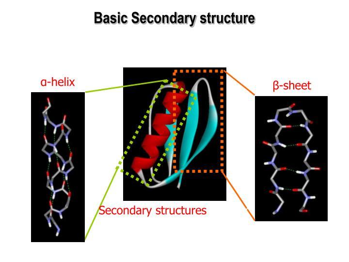 Basic Secondary