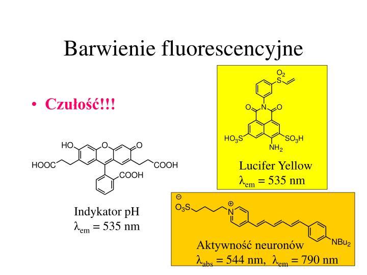 Barwienie fluorescencyjne