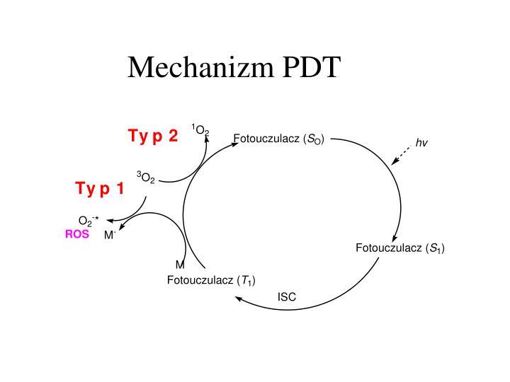 Mechanizm PDT