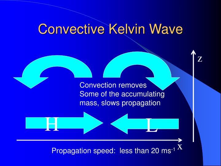 Convective Kelvin Wave
