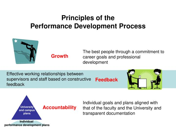 Principles of the performance development process