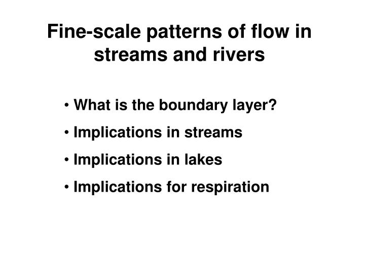 Fine-scale patterns of flow in streams and rivers