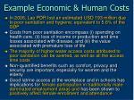 example economic human costs