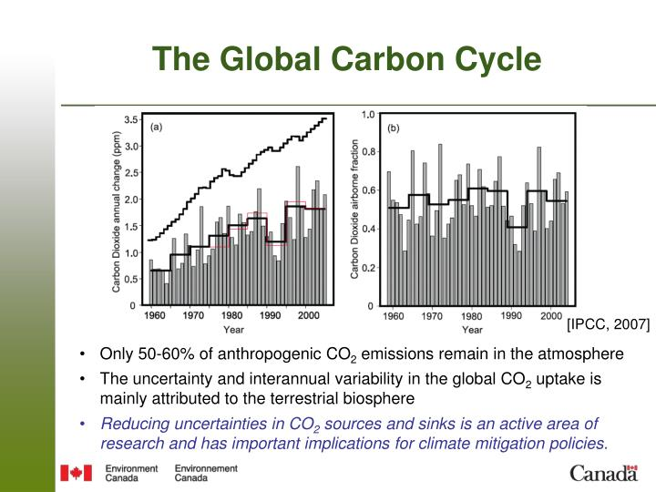 The global carbon cycle1
