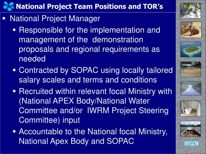 National Project Team Positions and TOR's