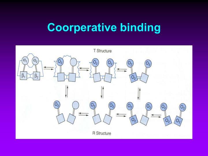 Coorperative binding