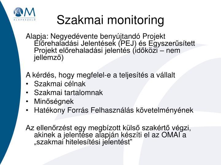 Szakmai monitoring