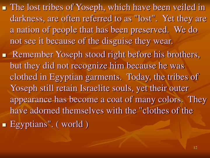 "The lost tribes of Yoseph, which have been veiled in darkness, are often referred to as ""lost"".  Yet they are a nation of people that has been preserved.  We do not see it because of the disguise they wear."