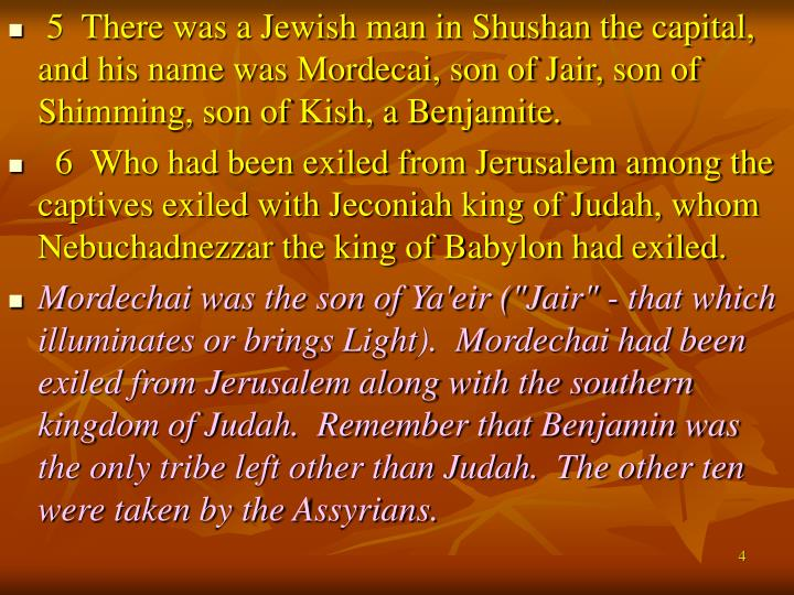 5  There was a Jewish man in Shushan the capital, and his name was Mordecai, son of Jair, son of Shimming, son of Kish, a Benjamite.