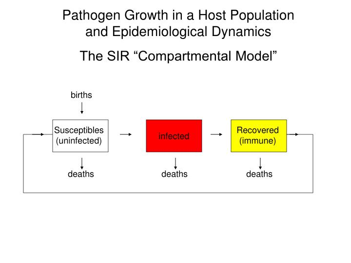 Pathogen Growth in a Host Population and Epidemiological Dynamics