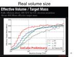 real volume size