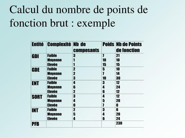 Calcul du nombre de points de fonction brut : exemple