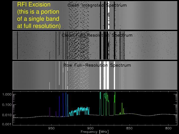 RFI Excision