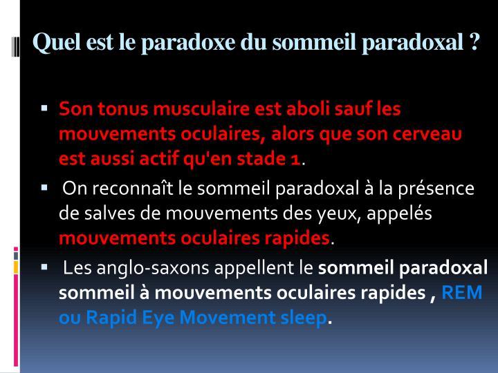 Quel est le paradoxe du sommeil paradoxal ?