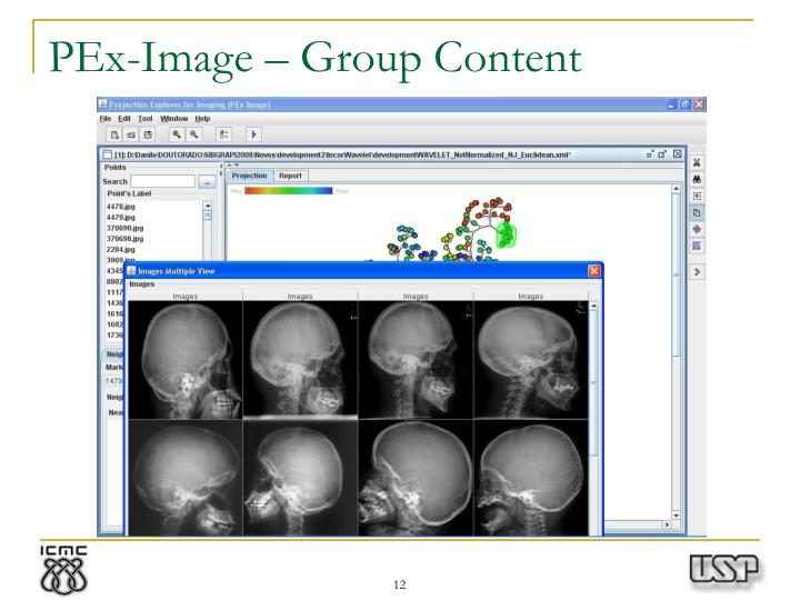 PEx-Image – Group Content